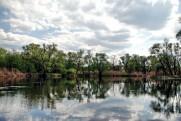 Река Северский Донец в мае 2011 Андреевка - Балаклея - Андреевка