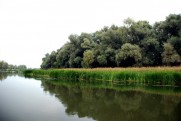 Река Северский Донец, устье реки Оскол в сентябре 2011 Изюм - Славяногорск - Изюм