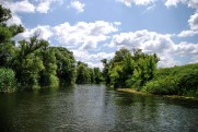 The Oskol River in June 2011 Topoli - Kupyansk